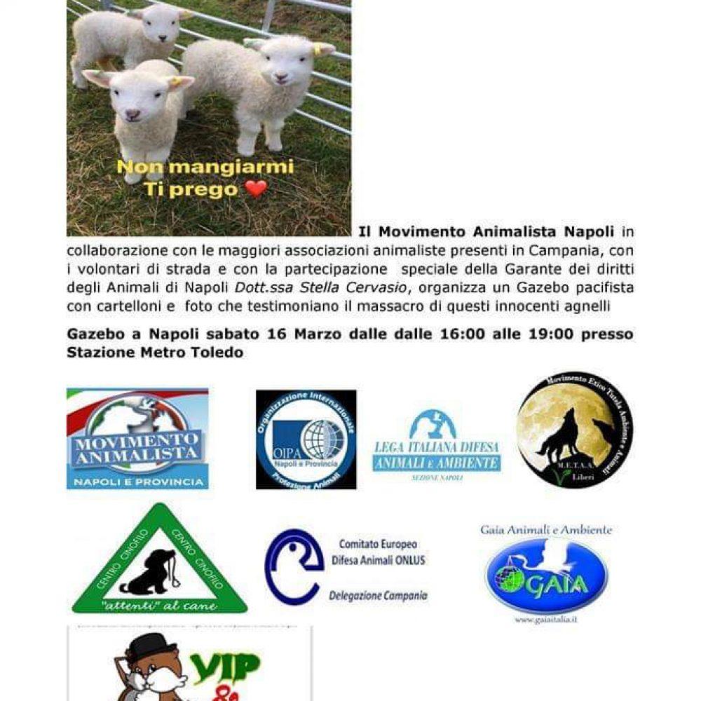 A Napoli iniziative contro la mattanza degli agnelli.
