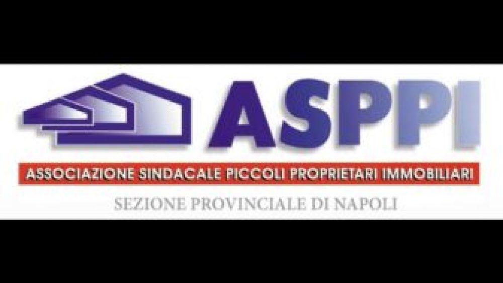 """Conversione in Legge del Decreto """"Rilancio"""" Le proposte dell'ASPPI."""